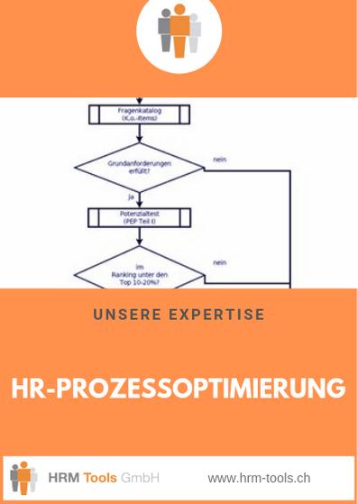 HRM Tools GmbH Geschäftsbereich / Expertise HR-Prozessoptimierung
