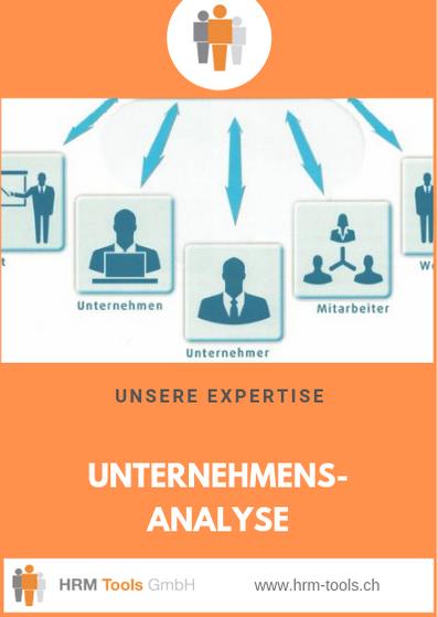 HRM Tools GmbH Geschäftsbereich / Expertise Unternehmensanalyse